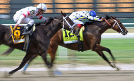 Champagne D'Oro Wins The Acorn Stakes Stock Photo