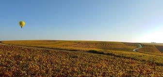 Champagne dans l'automne photo libre de droits