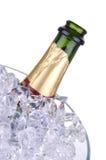 Champagne dans le seau à glace Photos stock