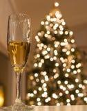 Champagne de vacances Photo libre de droits