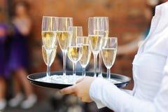 Champagne del servizio del cameriere fotografia stock libera da diritti