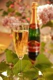 Champagne in den Glas- und Weinstockblättern Stockfotografie