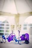 Champagne di nozze immagini stock libere da diritti