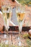 Champagne e borsa dell'oro sui bacini Immagini Stock