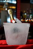 Champagne encased in ice. Champagne bottle encased in a bucket shaped block of ice on a red tray Royalty Free Stock Image
