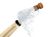 Champagne Exploded Royalty Free Stock Photography