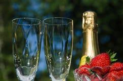 Champagne-, exponeringsglas- och jordgubbeoudoors Royaltyfria Bilder