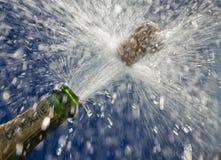 Champagne-Flasche lizenzfreies stockbild
