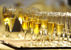 Champagne Flautes royalty free stock image