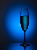 Champagne flute Royalty Free Stock Photos