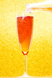 Champagne flute and bottle. Champagne rose flute and bottle Royalty Free Stock Photo