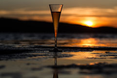 Champagne flute glass against sunset Stock Images