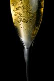 Champagne flute with golden fine bubbles Royalty Free Stock Images
