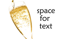 Champagne flute with golden fine bubbles Stock Image
