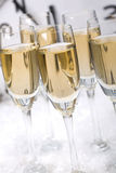 Champagne flutes. Close-up of flutes of champagne in snow stock images