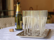 Champagne flutes on a tray  to be served Stock Photos