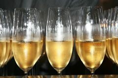 Free Champagne For Celebration Stock Images - 14719194