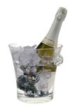 Champagne froid Image stock