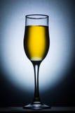 Champagne-Glas hintergrundbeleuchtet stockbild