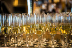 Champagne in the glases Stock Photos