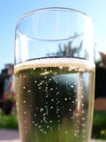 Champagne Glass. Close up view of a champagne glass outdoor Royalty Free Stock Images