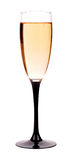 Champagne in a glass Royalty Free Stock Photo