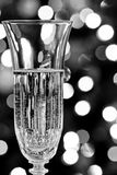 Champagne Glass Royalty Free Stock Photo