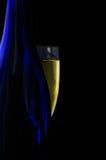 a champagne glass * Zdjęcie Stock