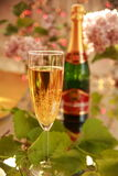 Champagne in glass and grape-vine leaves Stock Photography