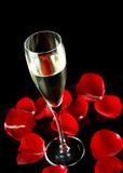 Champagne glass with petals of rose Royalty Free Stock Image