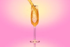 Champagne in a glass on pink background Royalty Free Stock Images