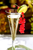 Champagne glass with red currant Stock Photography