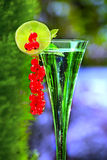 Champagne glass with red currant Royalty Free Stock Photos