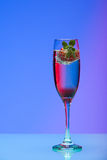 Champagne glass with strawberry, studio shot Stock Image