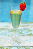 Champagne glass with strawberry on turquiose background Stock Photography