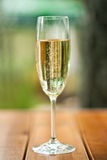 Champagne glass Royalty Free Stock Image