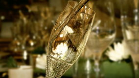 Champagne. Glass of champagne - video made in 3d stock video