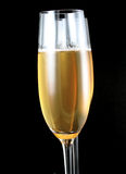 Champagne Glasses. Champagne Flutes against black background royalty free stock photos