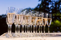 Champagne into glasses Stock Image