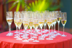 Champagne glasses Royalty Free Stock Images