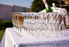 Champagne Glasses Arkivfoton