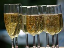 Champagne glasses. Filled champagne glasses Royalty Free Stock Images