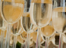 Champagne Glasses Royalty Free Stock Image