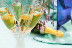 Champagne glasses and bottle Royalty Free Stock Photography