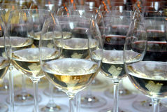 Champagne glasses filled with alcohol royalty free stock photography