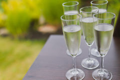 Champagne glasses. Filled with bubbles Stock Photography