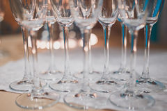 Champagne glasses. A number of champagne glasses filled with bubbles, waiting to be served at a reception Stock Photos