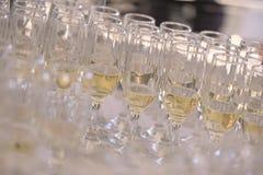 Champagne Glasses på tabellen Royaltyfria Foton