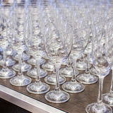Champagne glasses in a row. Stock Image