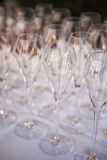 Champagne Glasses in a row Royalty Free Stock Image